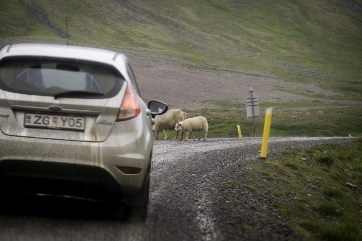 Séjour en Islande : quelques conseils pour louer une voiture
